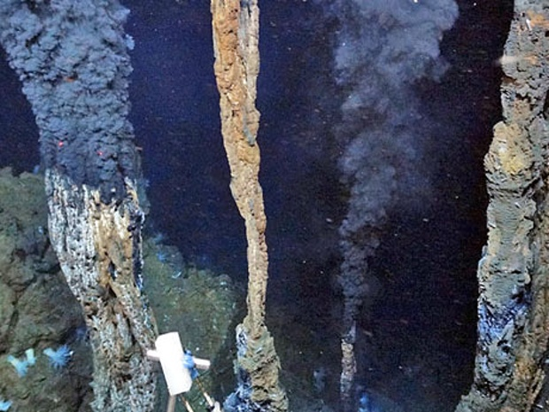 Hydrothermal vents in the 001