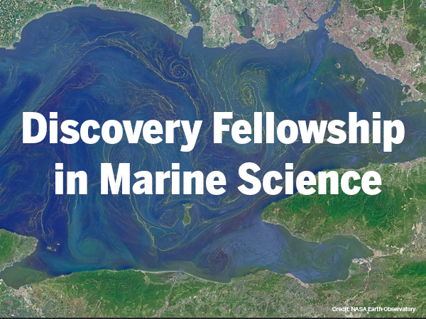 Accepting applications for Discovery Fellowship in Marine Science