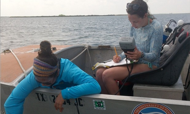Seagrass scientists continue work in the wake of a hurricane