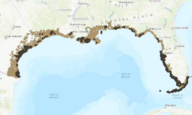 The Gulf of Mexico gets its Physical