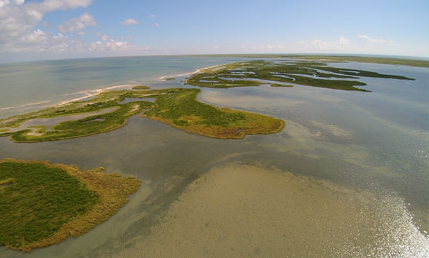 Researchers at The University of Texas Marine Science Institute in Port Aransas, Texas will study the effects of Hurricane Harvey on the local seagrass beds and bay system. Credit: Jace Tunnell.