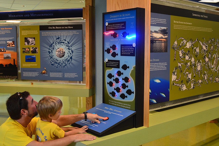 The Estuary Explorium is Open!
