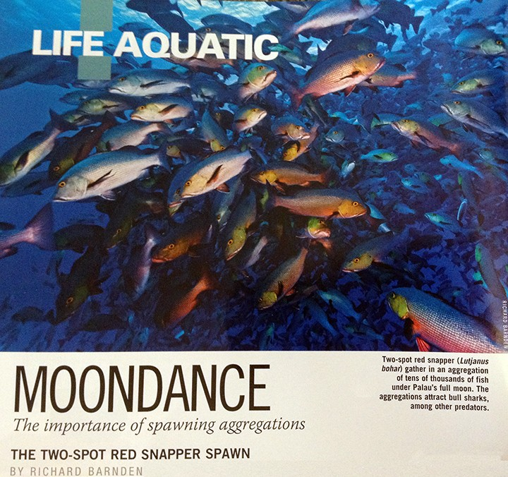 Dr. Brad Erisman's work is showcased in AlertDiver magazine