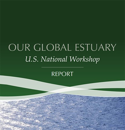 New Report Released on Estuarine Issues